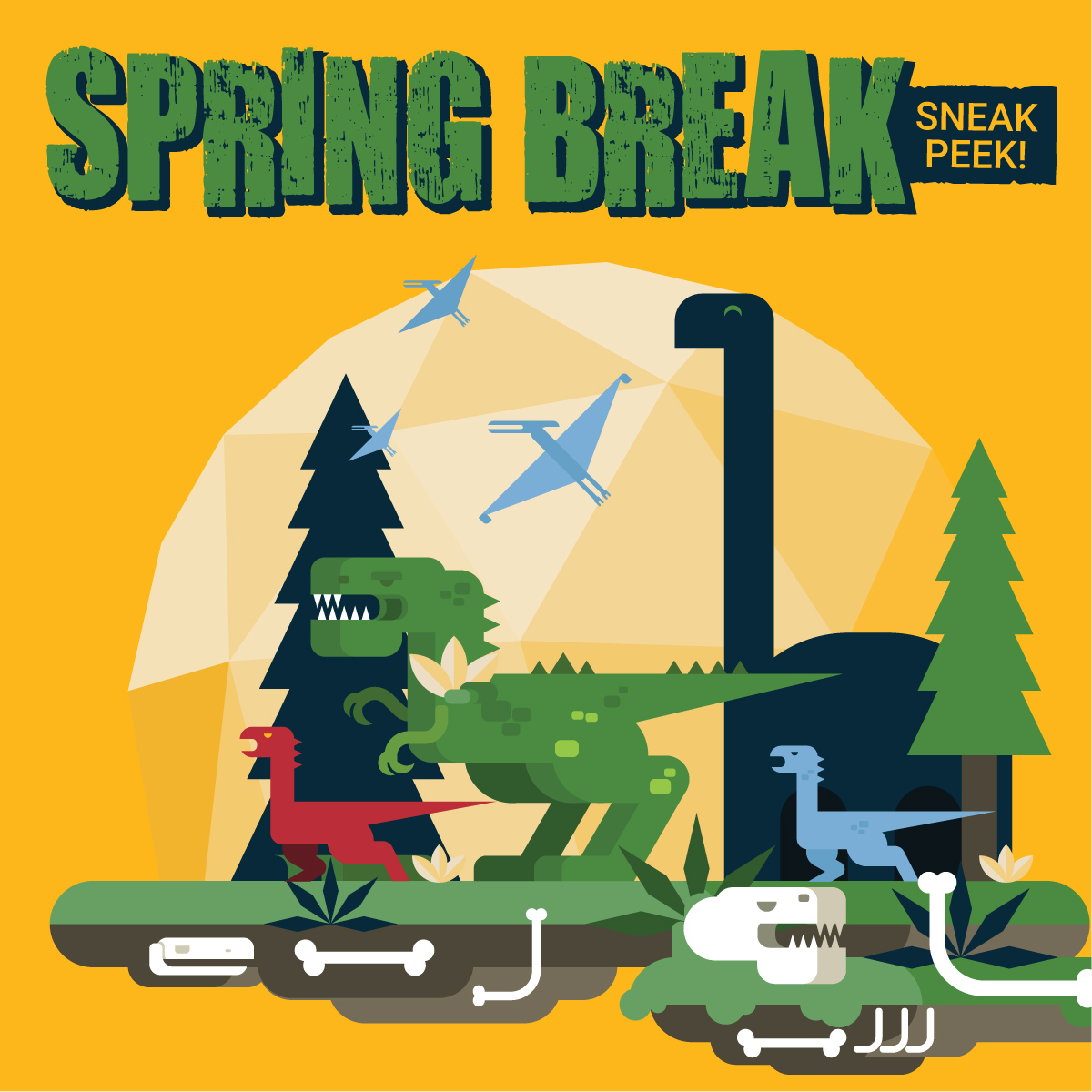 Spring Break Sneak Peek